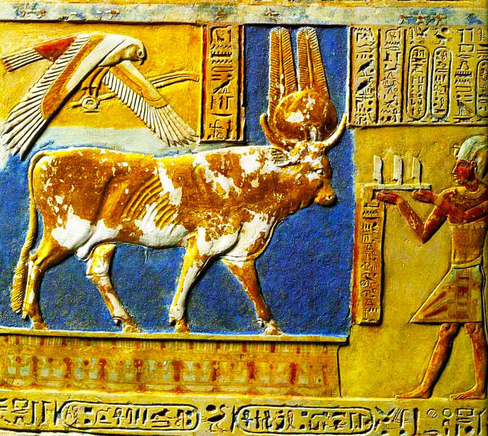 egipto vaca